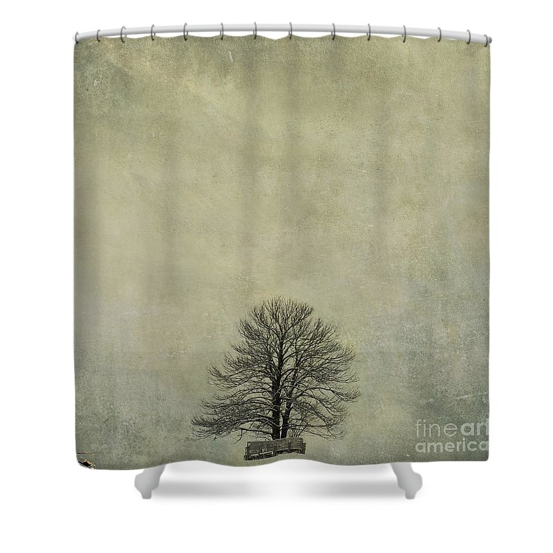 Yellowed Shower Curtain featuring the photograph Bare Tree. Vintage-look. Auvergne. France by Bernard Jaubert