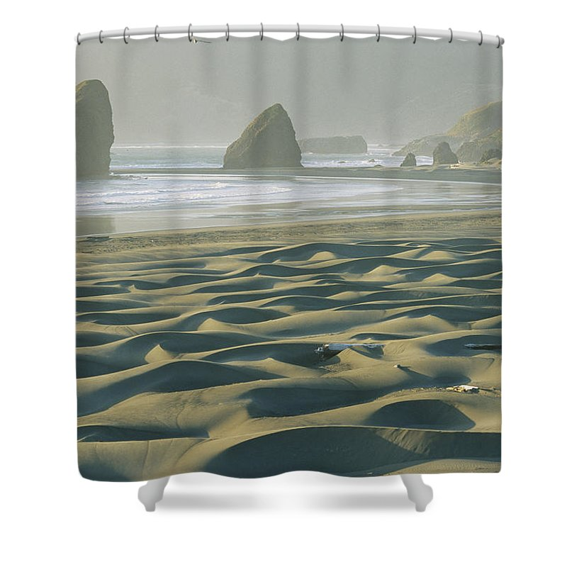 Geography Shower Curtain featuring the photograph Beach With Dunes And Seastack Rocks by Skip Brown
