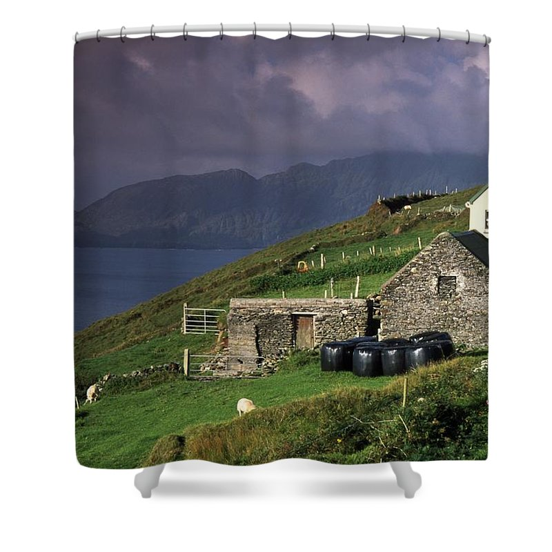 Agriculture Shower Curtain featuring the photograph Beara Peninsula, County Cork, Ireland by Richard Cummins