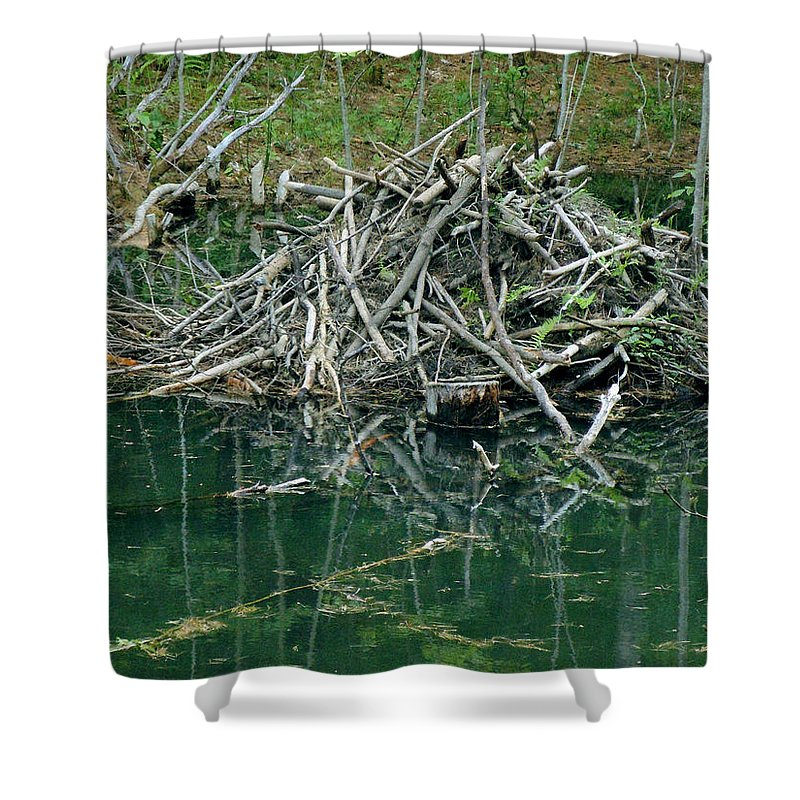 Beaver Shower Curtain featuring the photograph Beaver House by Nancy Griswold