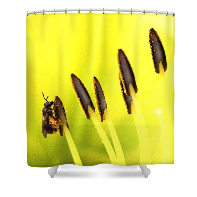 Shower Curtain featuring the photograph Bee A Little Different by Travis Truelove