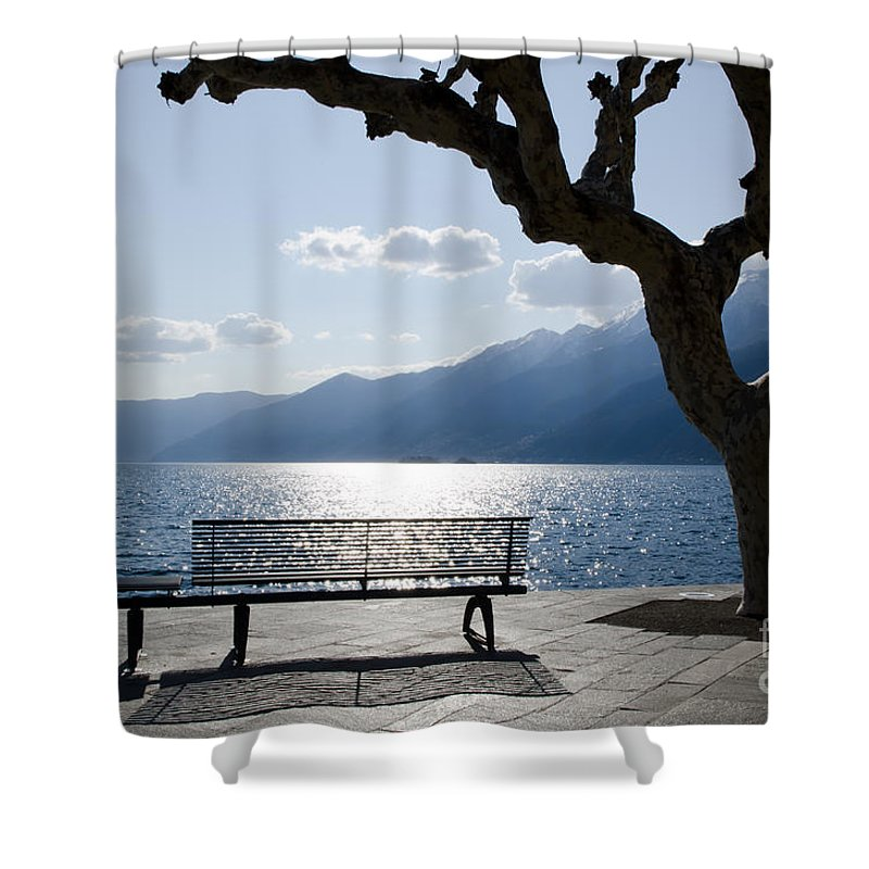 Bench Shower Curtain featuring the photograph Bench And Tree On An Alpine Lake by Mats Silvan