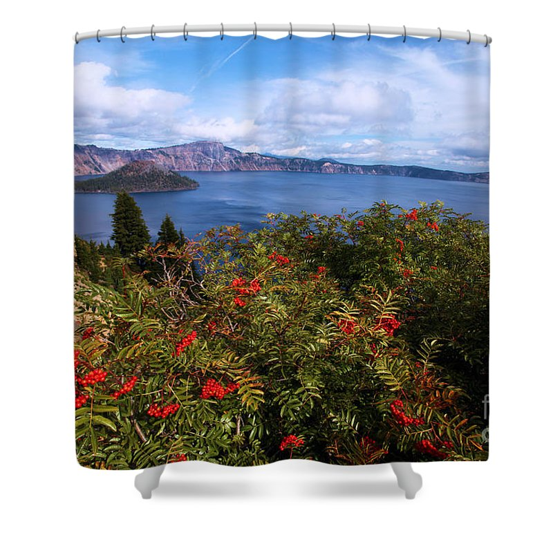 Crater Lake National Park Shower Curtain featuring the photograph Berries By The Lake by Adam Jewell