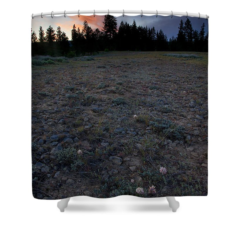 Big-headed Clover Shower Curtain featuring the photograph Big-headed Clover Sunset by Mike Dawson