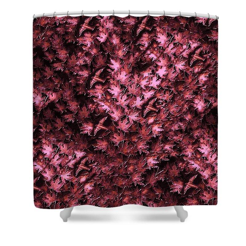 Digital Art Shower Curtain featuring the digital art Birds In Redviolet by David Dehner
