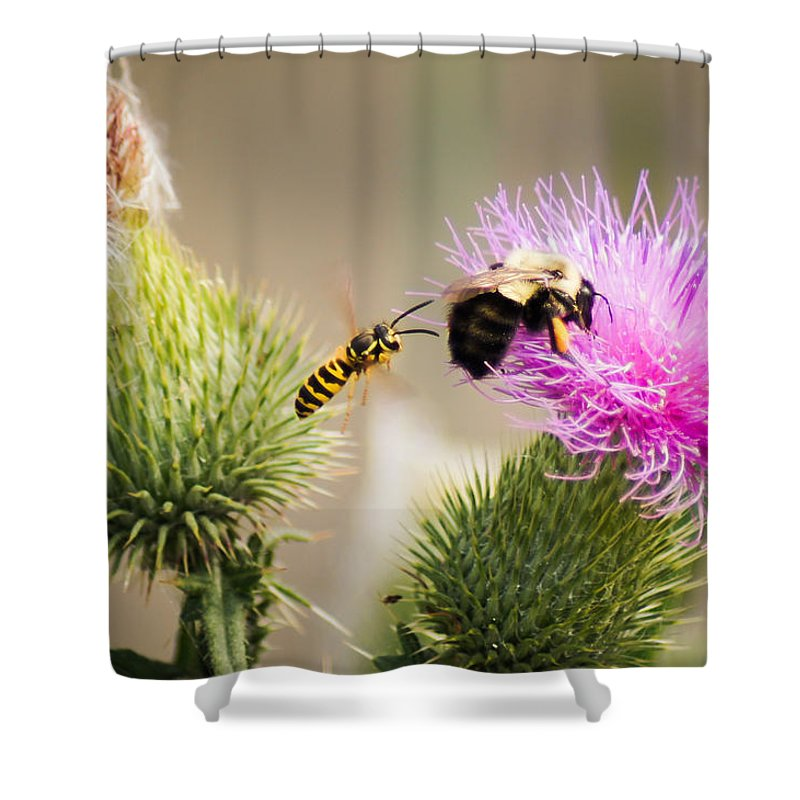 Bee Shower Curtain featuring the photograph Blind Side Attack by Bill Pevlor