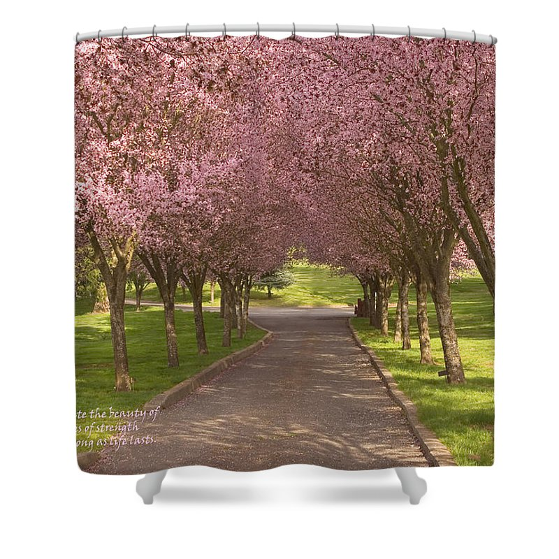 Blooms Shower Curtain featuring the photograph Blooms Along The Lane by Mick Anderson