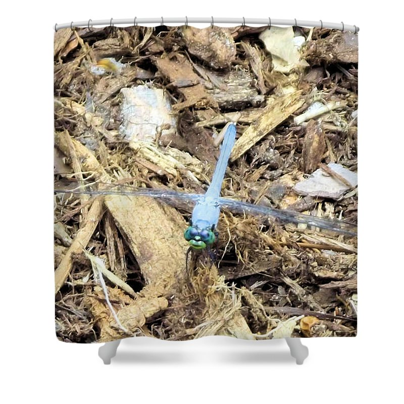 Blue Shower Curtain featuring the photograph Blue Dragonfly by Jennifer Stockman