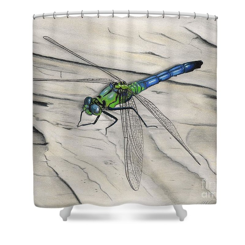 Blue Green Dragonfly Shower Curtain For Sale By Christian Conner