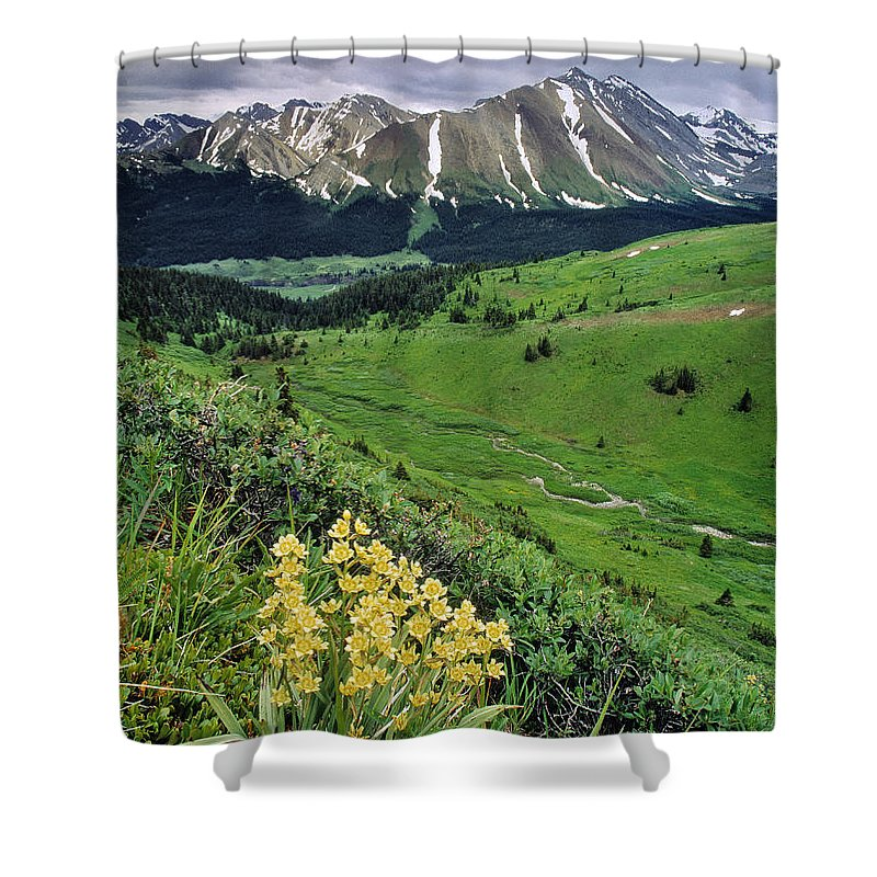 Light Shower Curtain featuring the photograph Blue Grouse Pass, Willmore Wilderness by Darwin Wiggett