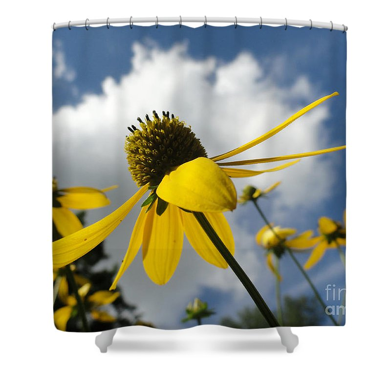 Bandon Beach Shower Curtain featuring the photograph Blue Yeller by Trish Hale