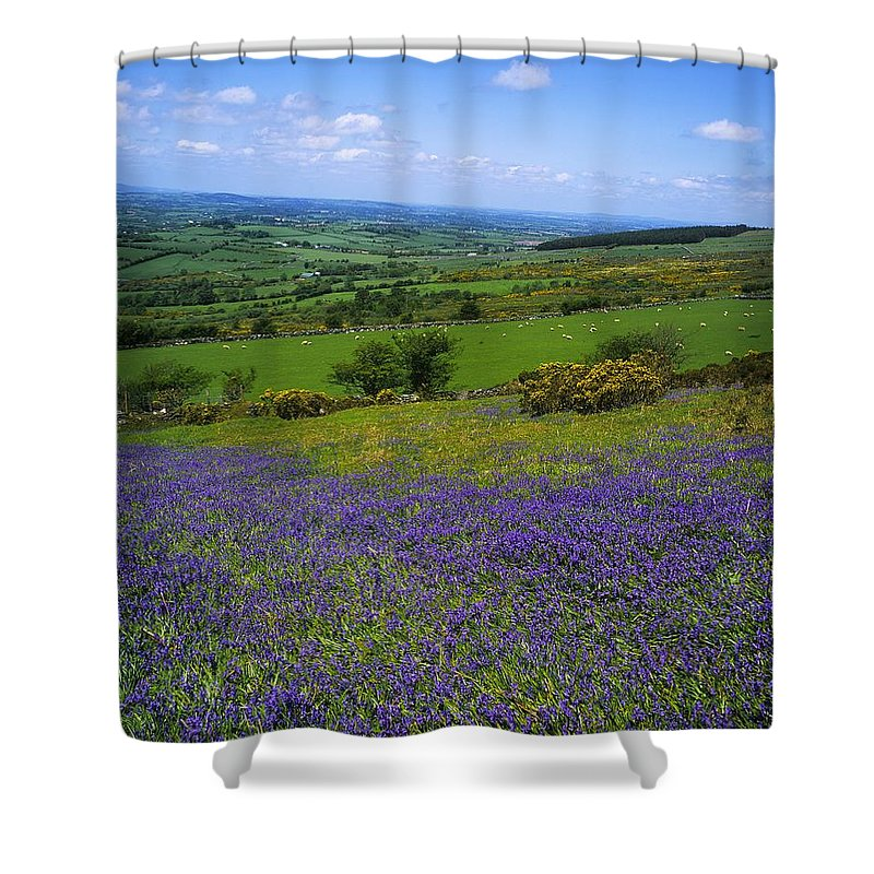 Beauty In Nature Shower Curtain featuring the photograph Bluebell Flowers On A Landscape, County by The Irish Image Collection