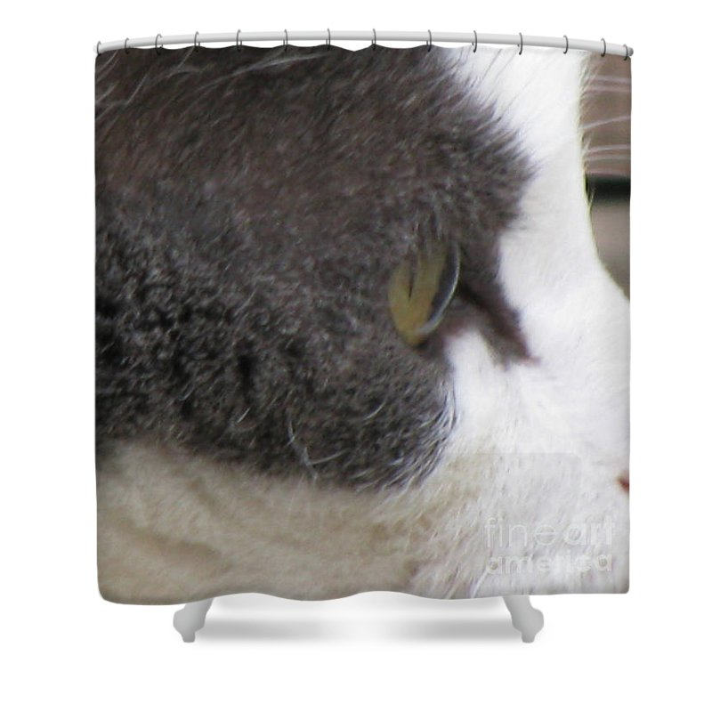 Animal Shower Curtain featuring the photograph Boojer's Eye by Donna Brown