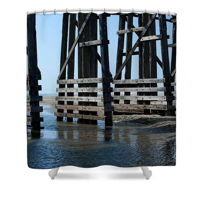Sandra Bronstein Shower Curtain featuring the photograph Bridge Detail by Sandra Bronstein