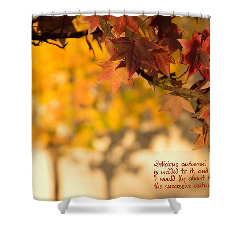 Brilliant Shower Curtain featuring the photograph Brilliant Autumn Color by Mick Anderson