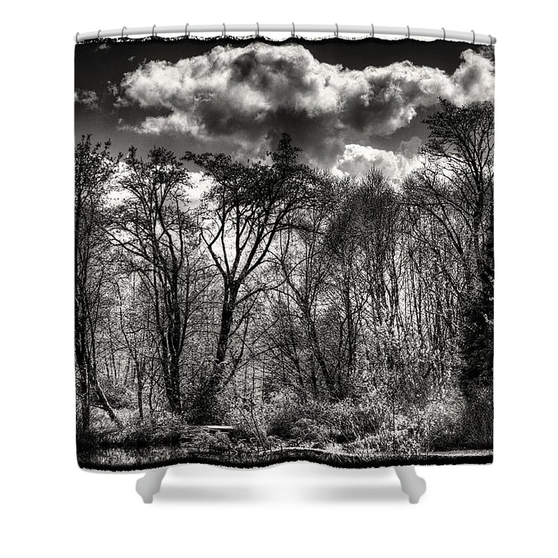 Pond Shower Curtain featuring the photograph Brook Lake In The West Hylebos Wetlands by David Patterson