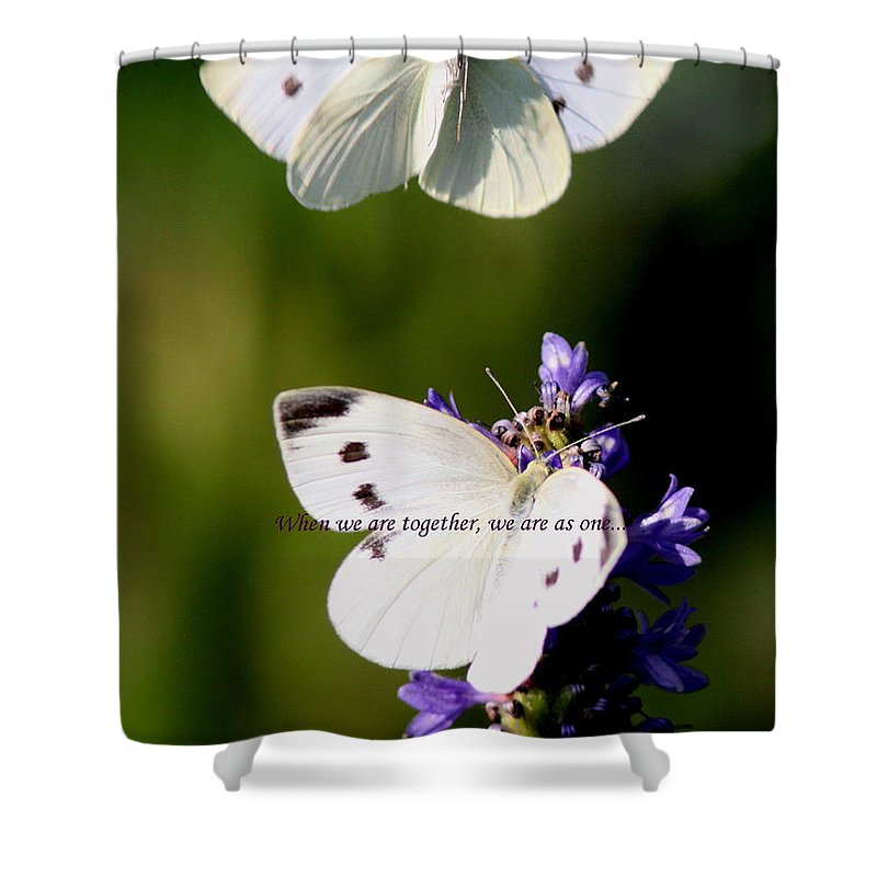 Cabbage White Shower Curtain featuring the photograph Butterfly - Cabbage White - As One by Travis Truelove
