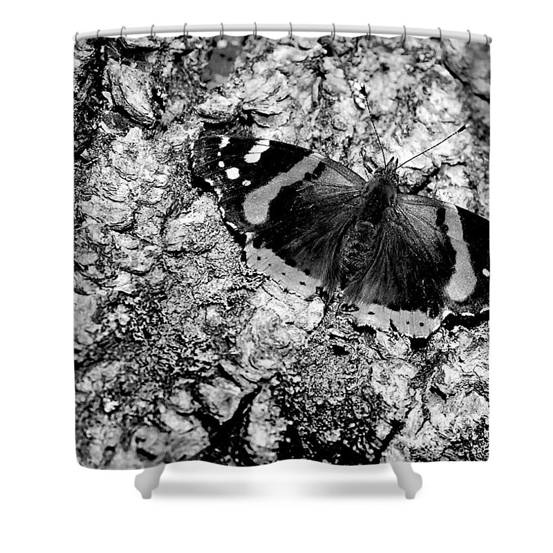 Usa Shower Curtain featuring the photograph Butterfly Bark Black And White by LeeAnn McLaneGoetz McLaneGoetzStudioLLCcom