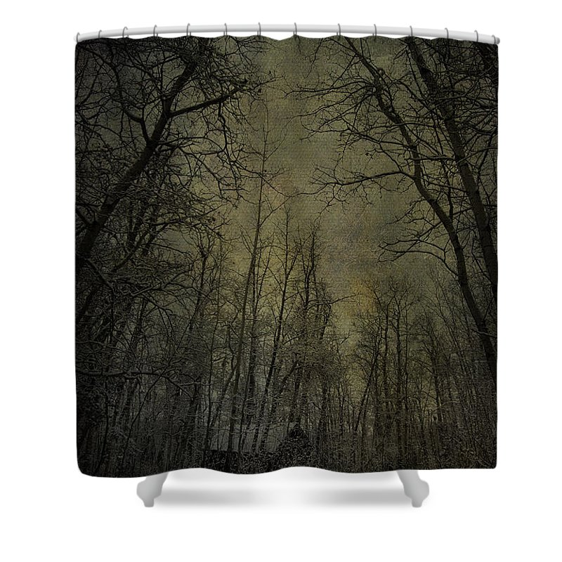 Jerry Cordeiro Photographs Shower Curtain featuring the photograph Cabin Fever by The Artist Project