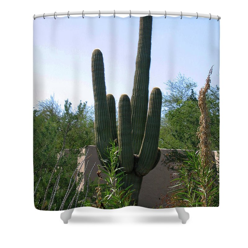 Cactus Shower Curtain featuring the photograph Cactus by Denise Keegan Frawley