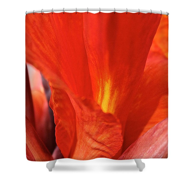 Outdoors Shower Curtain featuring the photograph Canna Closeup by Susan Herber