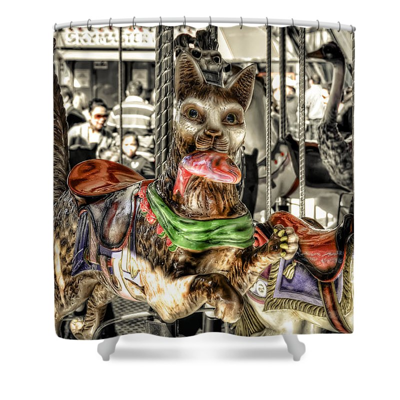 Cat Shower Curtain featuring the photograph Carousel Cat by Wayne Sherriff