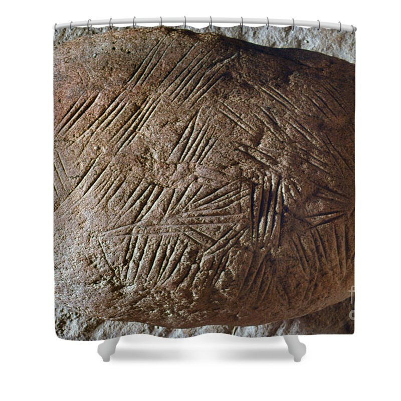 20 Shower Curtain featuring the photograph Cave Art: Incised Rock by Granger