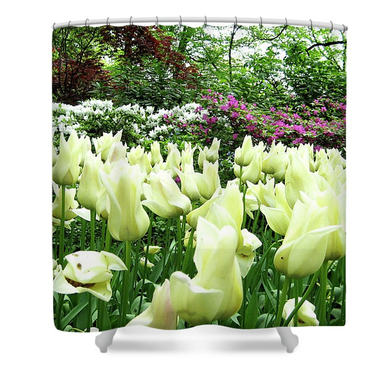 Central Park Shower Curtain featuring the photograph Central Park Tulips by Lorraine Devon Wilke
