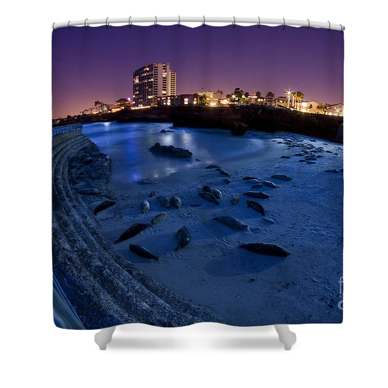 La Jolla Shower Curtain featuring the photograph Children's Pool 6 by Daniel Knighton