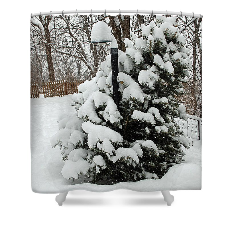 Christmas Shower Curtain featuring the photograph Christmas Tree by Aimee L Maher ALM GALLERY