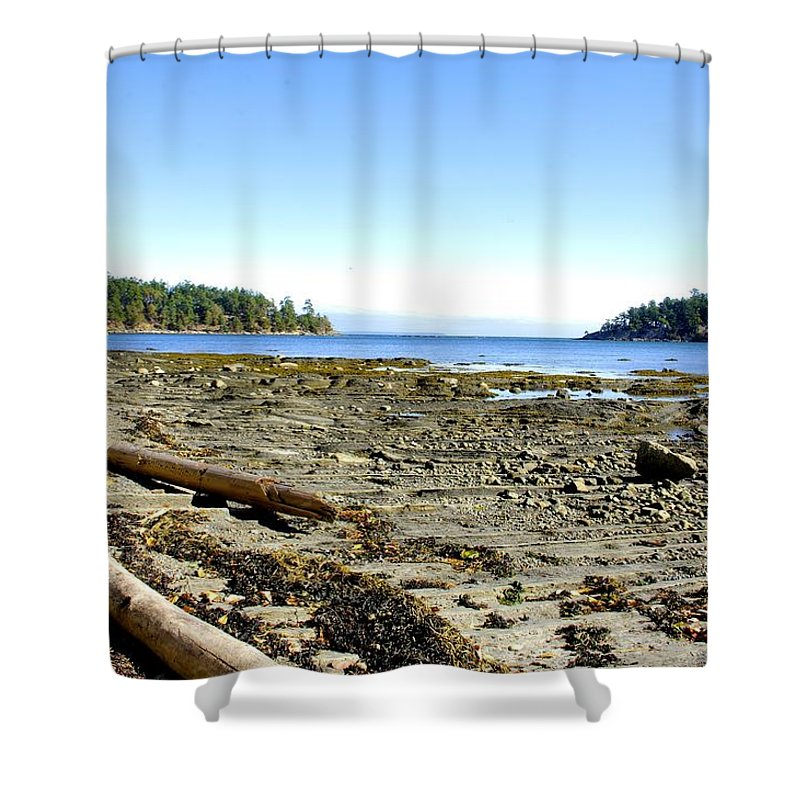 Bennett Bay Shower Curtain featuring the photograph Cliff And Beach by John Greaves