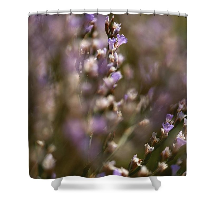 Plants Shower Curtain featuring the photograph Close View Of Purple Wildflowers by Mattias Klum