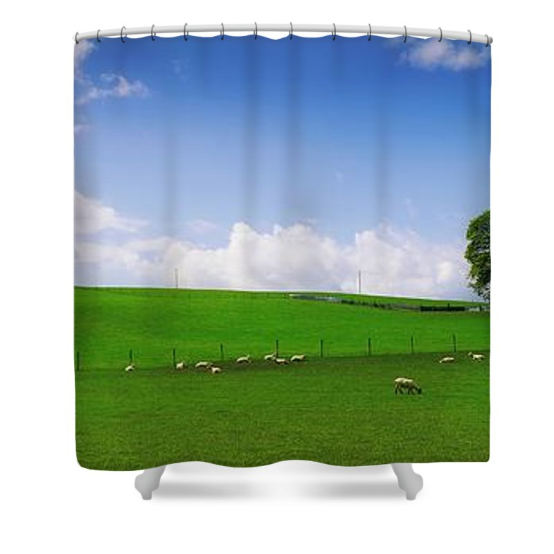 Blue Sky Shower Curtain featuring the photograph Co Wicklow, Ireland Sheep by The Irish Image Collection