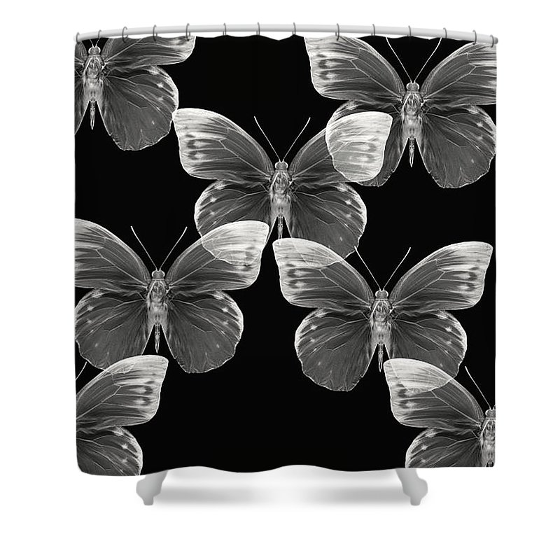 Butterfly Photographs Photographs Shower Curtain featuring the photograph Collection by Lourry Legarde
