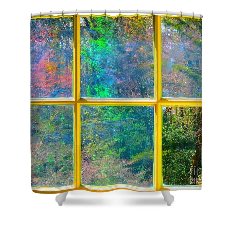 Antique Shower Curtain featuring the photograph Colonial Window Panes by Rrrose Pix