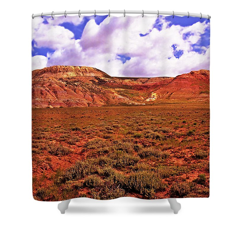 Wyoming Shower Curtain featuring the photograph Colorful Mesas At Fossil Butte Nm Butte by Rich Walter