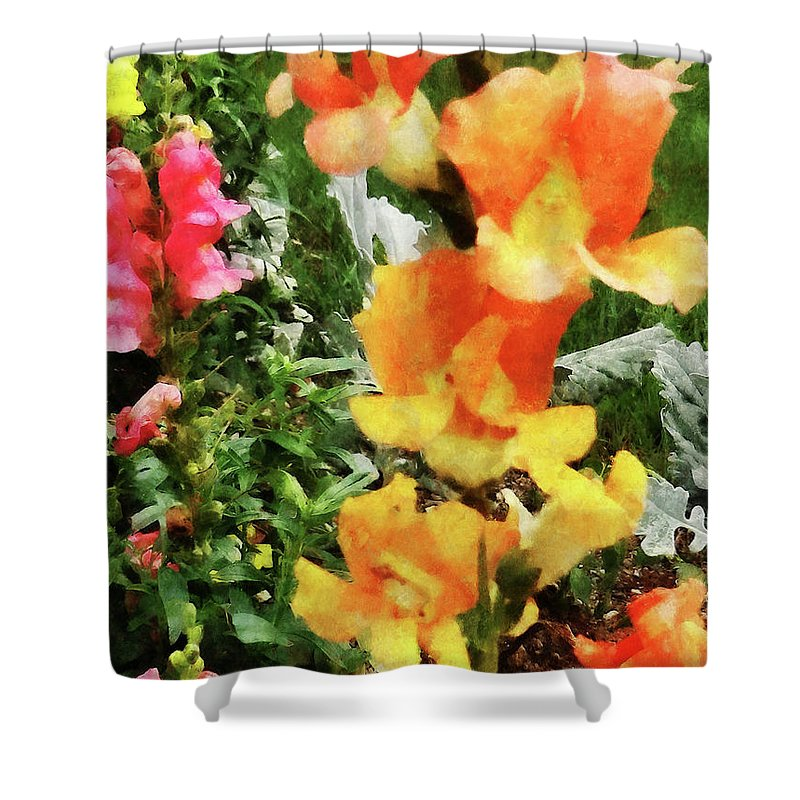 Garden Shower Curtain featuring the photograph Colorful Snapdragons by Susan Savad