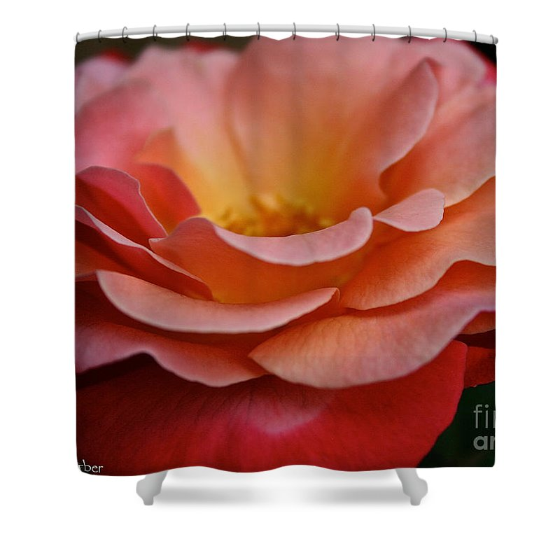 Plant Shower Curtain featuring the photograph Colorific by Susan Herber