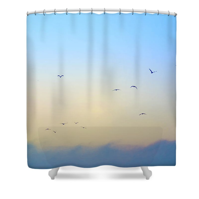 Bird Shower Curtain featuring the photograph Come Fly With Me by Bill Cannon