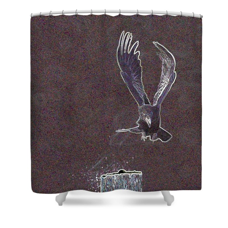 Crow Shower Curtain featuring the photograph Common Raven by One Rude Dawg Orcutt