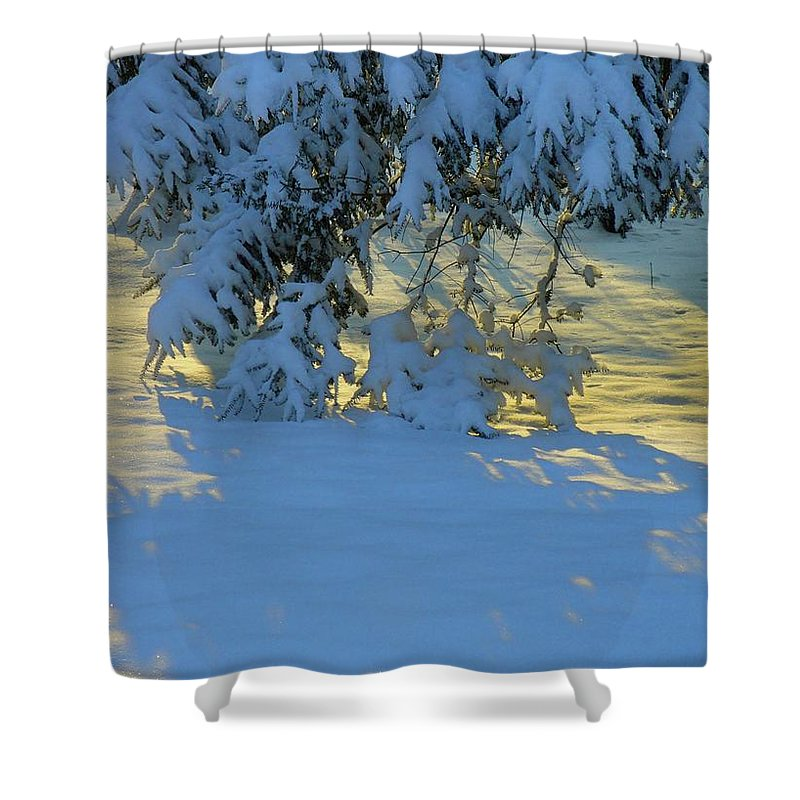 Touch Shower Curtain featuring the photograph Compliment by Jane Alexander