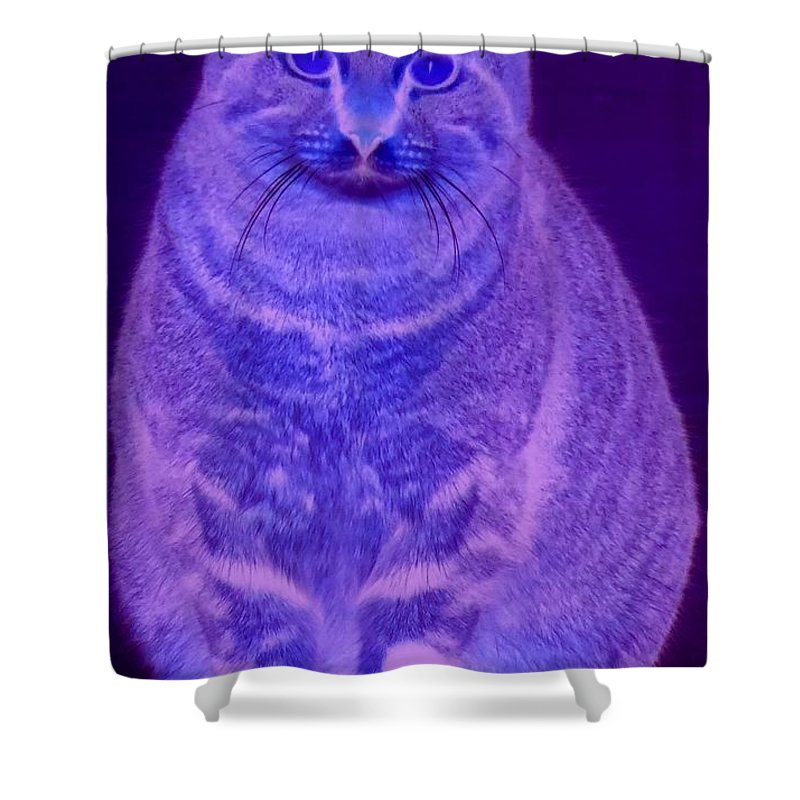 Abstract Shower Curtain featuring the photograph Conowingo Cat 03 by Rrrose Pix