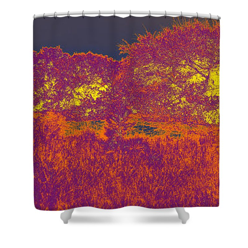 Corolla Shower Curtain featuring the photograph Corolla Horses Rev3 by Paulette B Wright