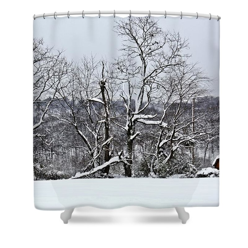 Alone Shower Curtain featuring the photograph Country Christmas 5 by Dan Stone