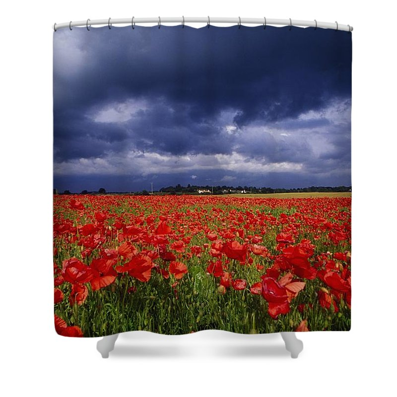 County Kildare Shower Curtain featuring the photograph County Kildare, Ireland Poppy Field by Richard Cummins