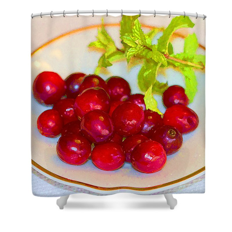 Cranberries Shower Curtain featuring the photograph Cranberries And Mint by Kathy Clark