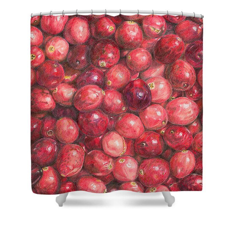 Cranberries Shower Curtain featuring the painting Cranberries by Dominic White