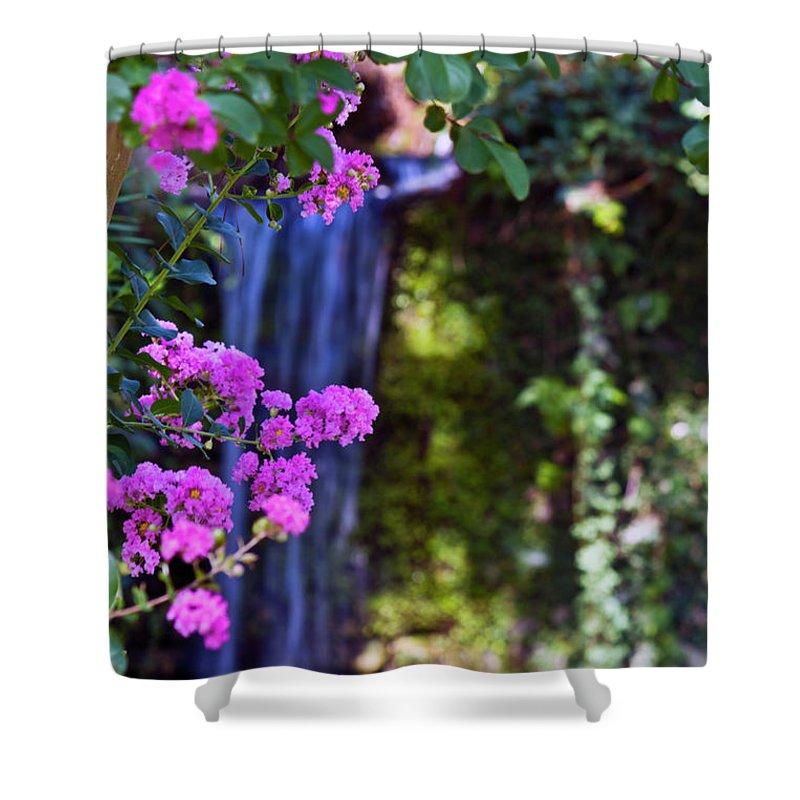 Flowers Shower Curtain featuring the photograph Crape Myrtle by Ken Frischkorn