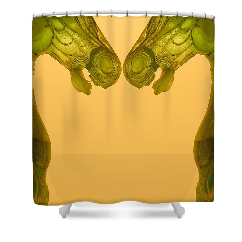 Shower Curtain featuring the photograph Creation 125 by Mike Nellums
