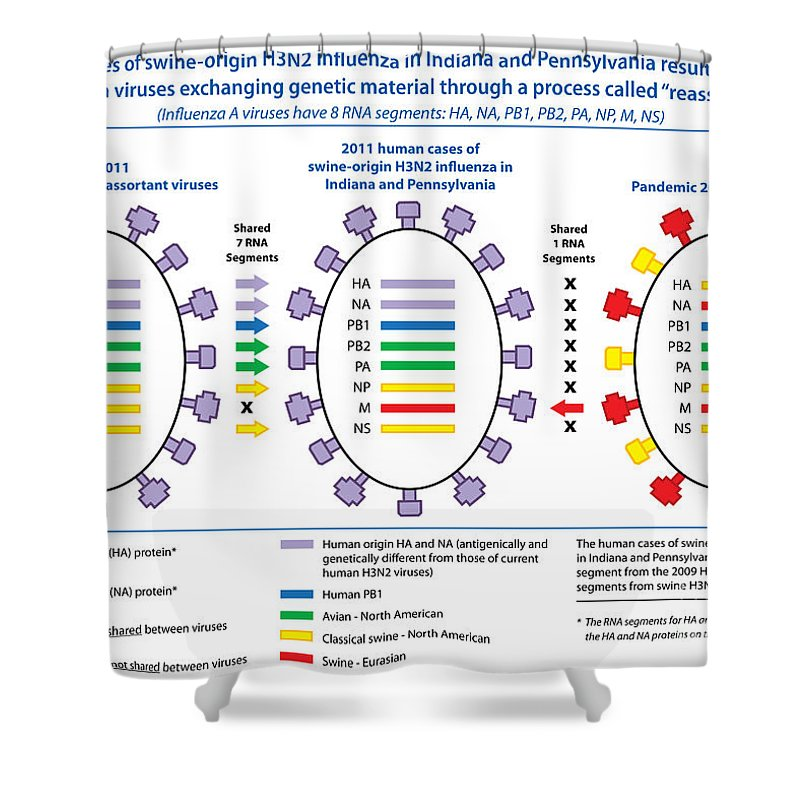 Science Shower Curtain featuring the photograph Creation Of H3n2 Influenza Virus by Science Source